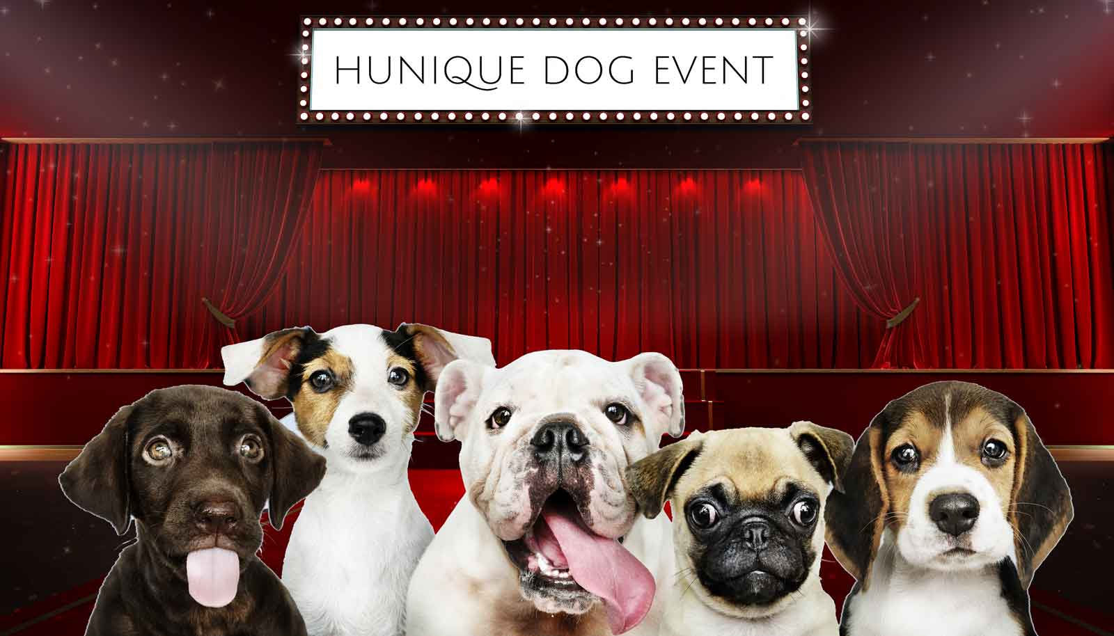 Hunique Dog Event 2019